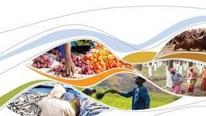 Financial Assistance Scheme for the Agriculture and Fisheries Export Enterprises to Move Up in the Value Chain